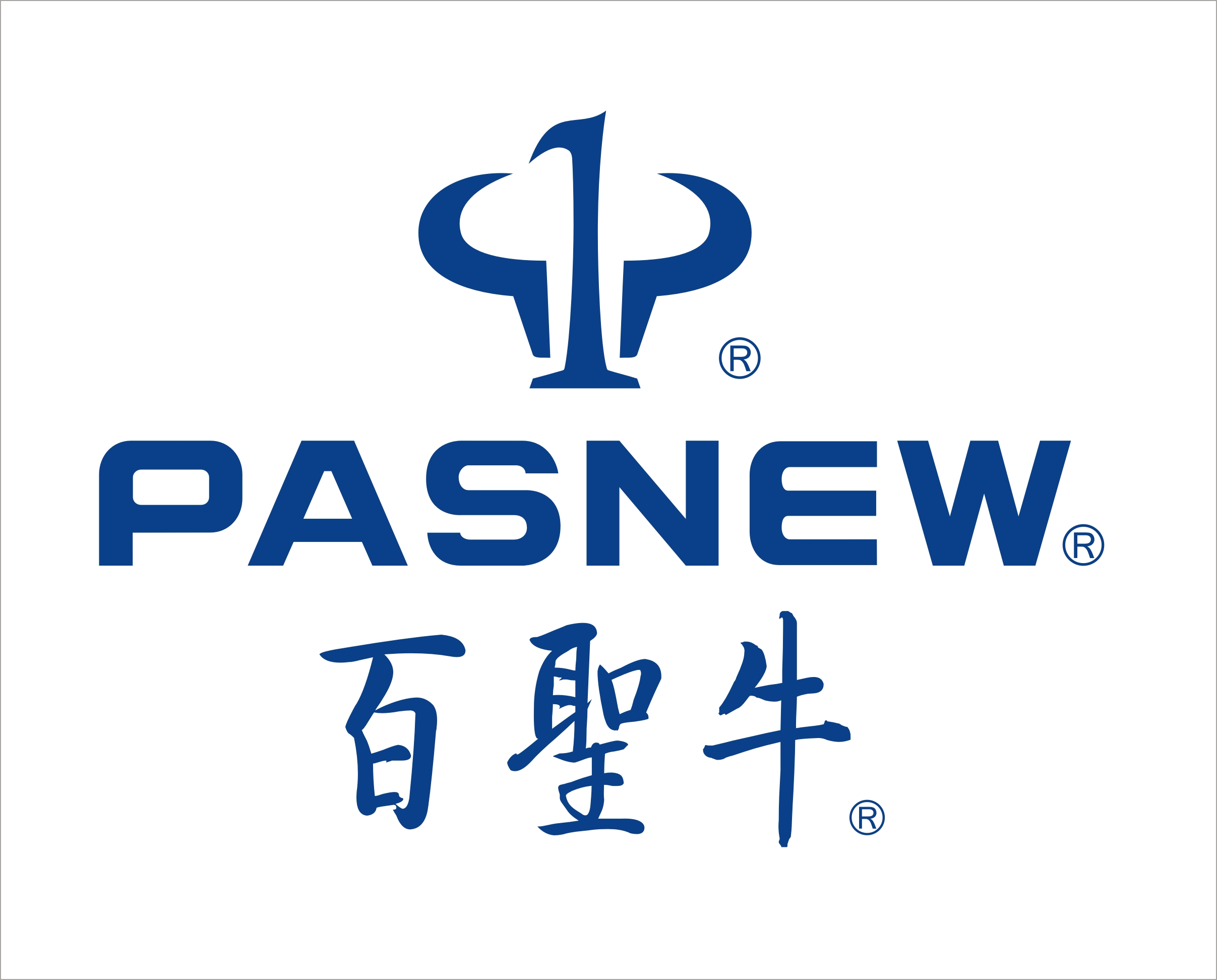 Guangzhou Pasnew Industrial Co. Ltd